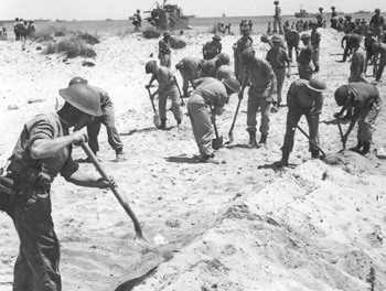 Pioneers constructing a road to lead off the landing beaches at Anzio, January 1944